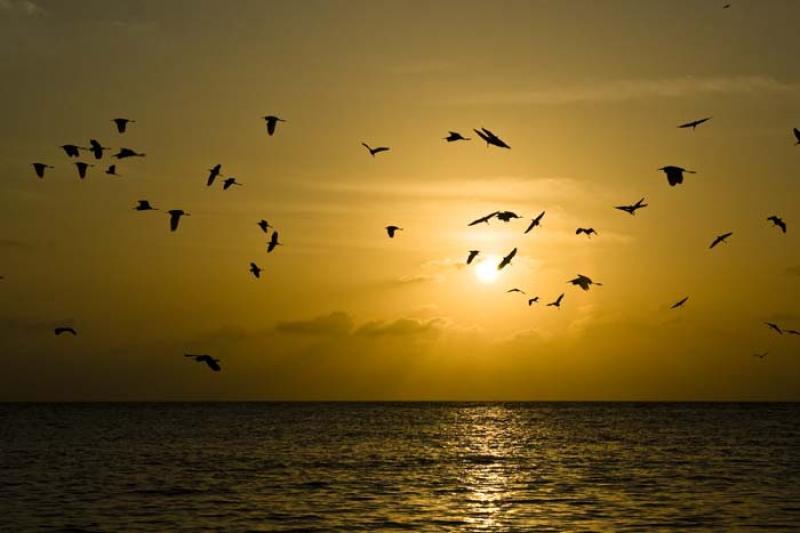 Isla Tintipan, Archipielago San Bernardo, Golfo de...