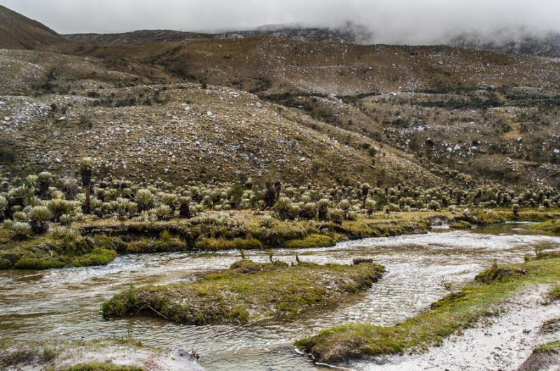 Parque Nacional Natural Los Nevados, Risaralda, Pe...