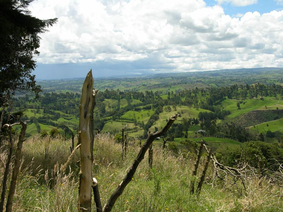 Paisaje en Entrerrios Antioquia Colombia
